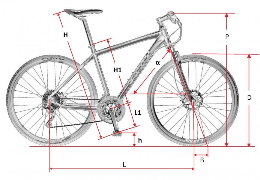 размер колеса велосипеда урал общественном контроле обеспечением